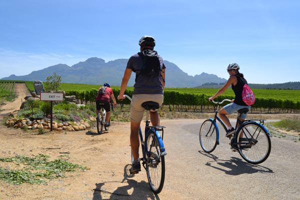 Wine Tours Stellenbosch
